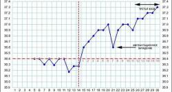 Базальная температура при беременности и её планировании — график. Как правильно измерять базальную температуру при беременности. Повыше